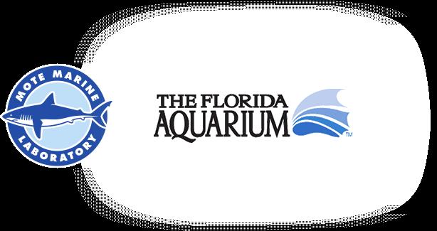 Mote Marine Laboratory and Florida Aquarium