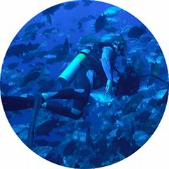 Nassau Grouper Spawning Aggregation Documentation